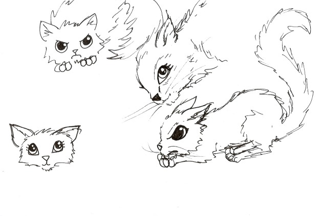 cat_sketches3 copy