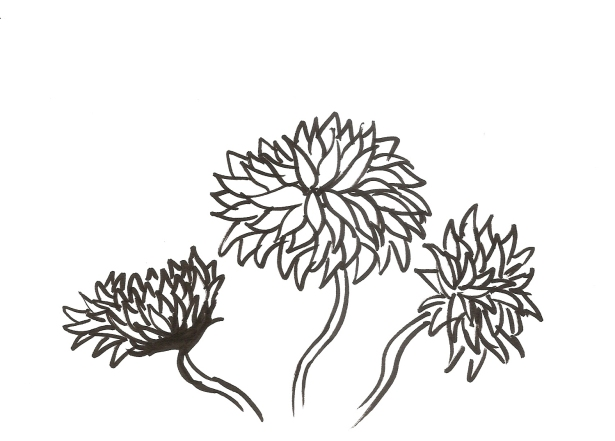 sumi_flower